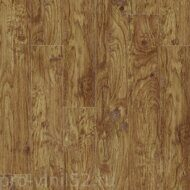 Eastern Hickory 57422 CL
